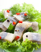 Herring fillet with herbs and spice — Stockfoto