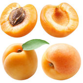 Collection of apricots with leaf isolated on white — Stock Photo