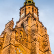 Świdnica - Cathedral. St. Stanislaus. Waclawa — Stock Photo