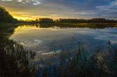 Ponds Reserve Milickie — Stock Photo