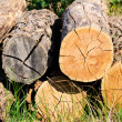 Stock Photo: Lumber