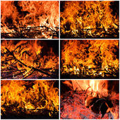 Fire collage — Stock Photo