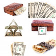 Dollars isolated collage - Stock Photo