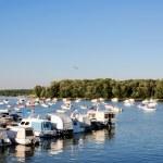 Boats on Danube river — Stock Photo #13352485