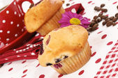 Cherry muffin — Stock Photo
