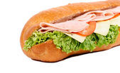 Yummy sandwich — Stock Photo