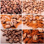 Raw coffee — Stock Photo