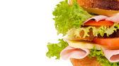 Half sandwich — Stock Photo