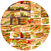 Sandwich circle — Stock Photo