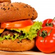 Tasty hamburger — Stock Photo #18198175