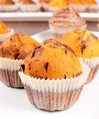 Muffin tårta — Stockfoto