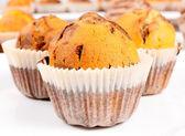 Muffin de chocolate — Fotografia Stock