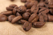 Fresh coffee beans — Foto Stock