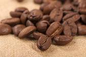 Frische kaffeebohnen — Stockfoto