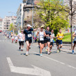 Belgrade marathon — Stock Photo #24316901