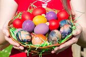Eggs basket — Stock Photo