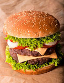 Doppio cheeseburger — Foto Stock