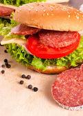 Salami sandwich — Stock Photo