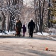 Winter family walk — Stock Photo