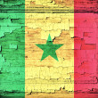 Senegal flag — Stock Photo #28812071