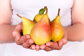 Pears in hands — Stock fotografie