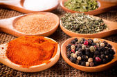 Group of spices — Stock Photo
