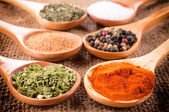 Spices in spoons — Foto Stock