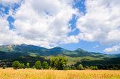 小山和云 — 图库照片