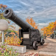 Old gun — Foto Stock