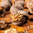 Stockfoto: Walnuts