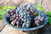 Grapes in plate — Stock Photo