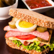 Tasty big sandwich — Stock Photo #34634337