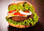 Single hamburger — Stockfoto