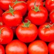Tomato background — Stock Photo