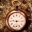 Old pocket watch — Stock Photo #41449495