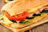 Fresh and healthy sandwich — Стоковое фото