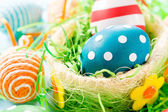 Dotted easter egg — Stock Photo