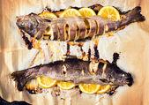 Prepared mackerel fish — Stock Photo