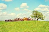 Paraje rural — Foto de Stock