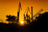 Industrial sunset cranes — Stock Photo