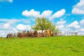 农村风景 — 图库照片