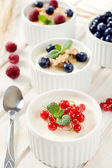 Panna cotta with berry fruits — Stock Photo
