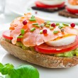 Sandwich with smoked salmon — Stock Photo
