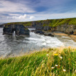 Cliffs in Ireland — Stock Photo #24488271