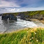 Cliffs in Ireland — Stock Photo