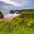 Stock Photo: Cliffs in Ireland