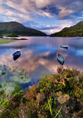 Lake in Killarney — Stock Photo