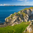 Stock Photo: Cliff in Northern Ireland