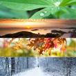 Four Seasons Collage — Foto de Stock
