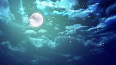 Nice moon night — Stock Video